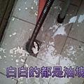 廚房地板排水孔.jpg