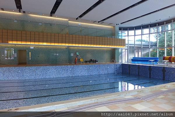 Tower B Swimming Pool_20150804.jpg