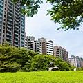 高雄美術館特區、綠意、公園、豪宅、房地產、社區大樓、休閒-36