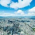 台北市空照圖、信義計畫區、房地產、商辦大樓-29