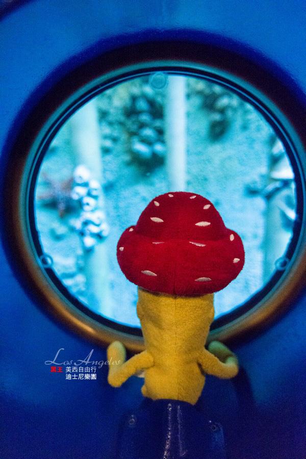 美西自由行-加州迪士尼-35 拷貝.jpg