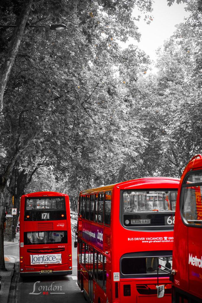 英國三紅、倫敦、雙層巴士-05.jpg