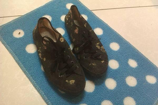 A鞋-24.5大小