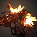 我好愛我的百合燈