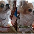 2014-06-28-10-11-33_photo_副本.jpg