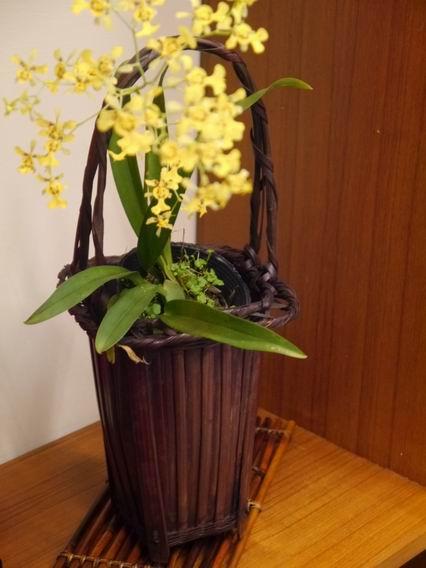 日本老竹籃-1