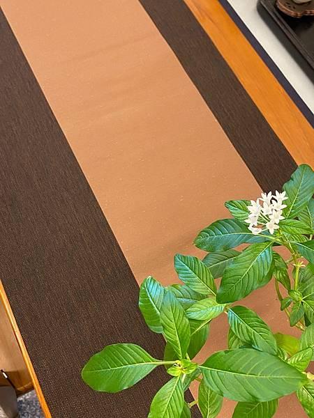 秋色茶巾組-2.jpg
