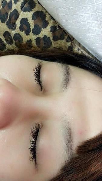 黑鑚睫毛 (4)