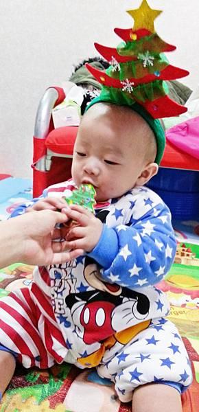聖誕糖霜餅乾 (3).jpg