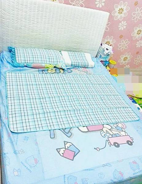 HD青野薄涼墊枕 (7).jpg