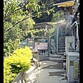 八里桃樂絲森林