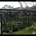 森林鳥花園