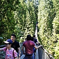 capilano suspension bridge