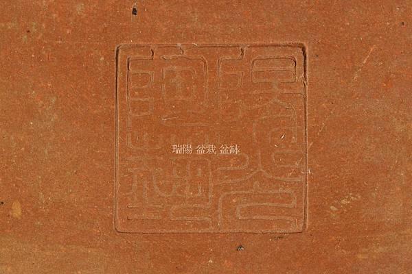DSC10503.jpg