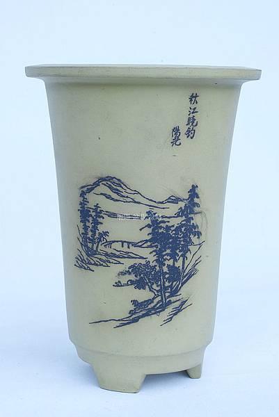 陽光蘭花盆14.3x14.3x5.6.jpg