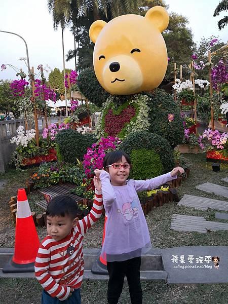 IMG_20190208_172419.jpg