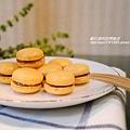 【黃金起士馬卡龍】Macaron