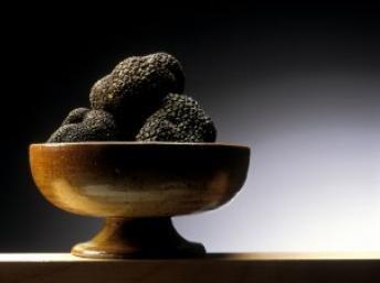 Truffe-Noire1.jpg