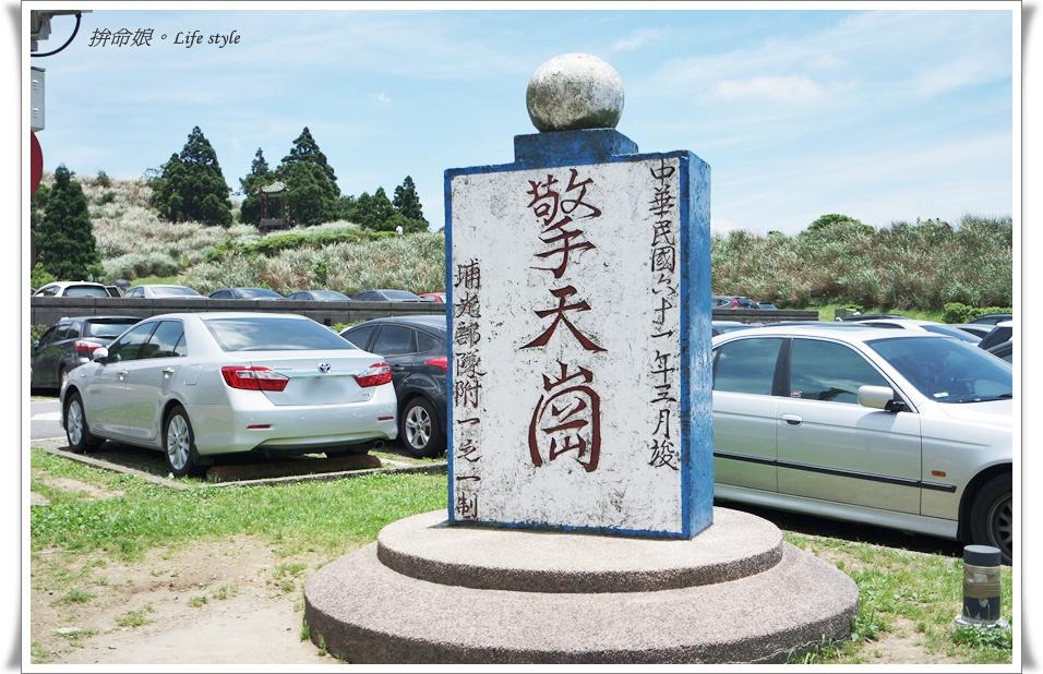 1050529陽明山擎天崗竹子湖大梯田4.jpg
