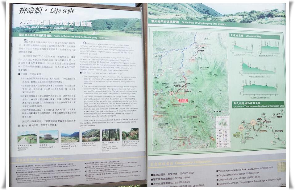 1050529陽明山擎天崗竹子湖大梯田6.jpg