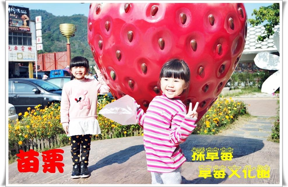 苗栗 大湖草莓1.jpg