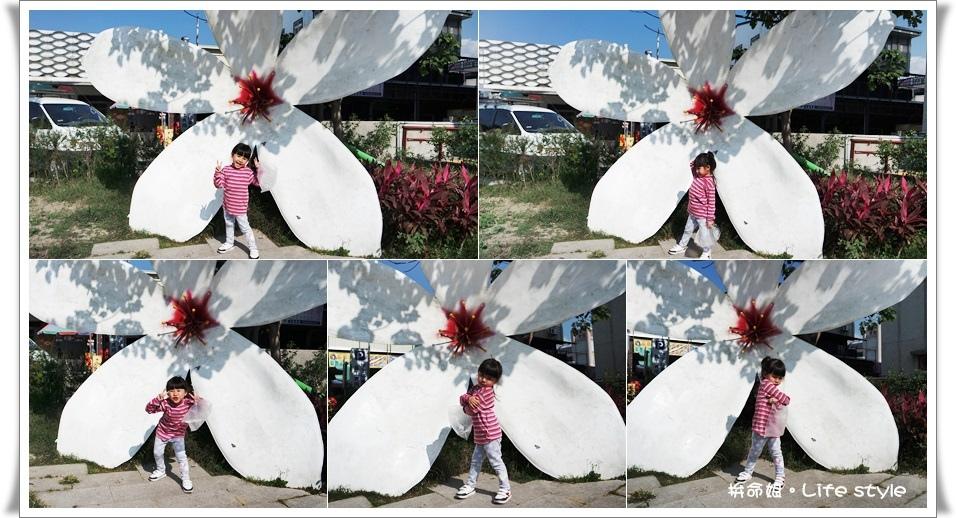 苗栗 大湖草莓4.jpg