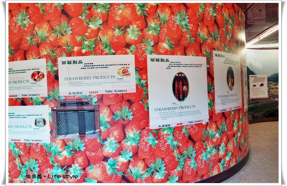 苗栗 大湖草莓9.jpg