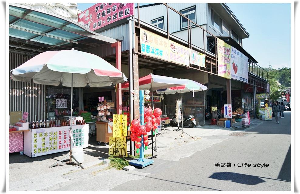 苗栗 大湖草莓11.jpg