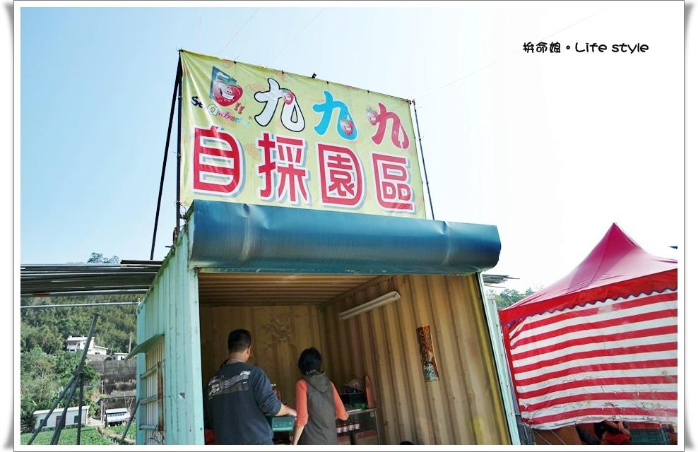 苗栗 大湖草莓12.jpg