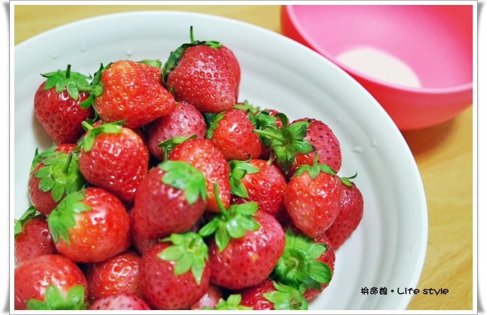 苗栗 大湖草莓20.jpg