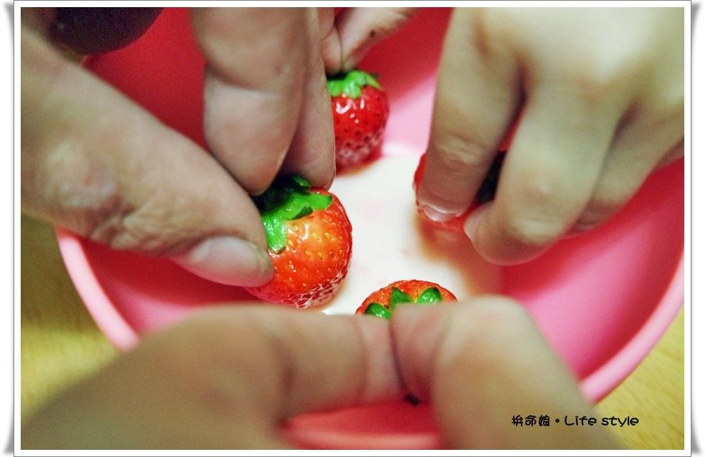 苗栗 大湖草莓21.jpg