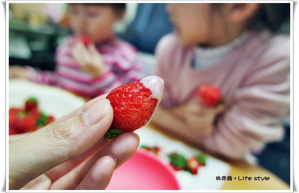 苗栗 大湖草莓22.jpg