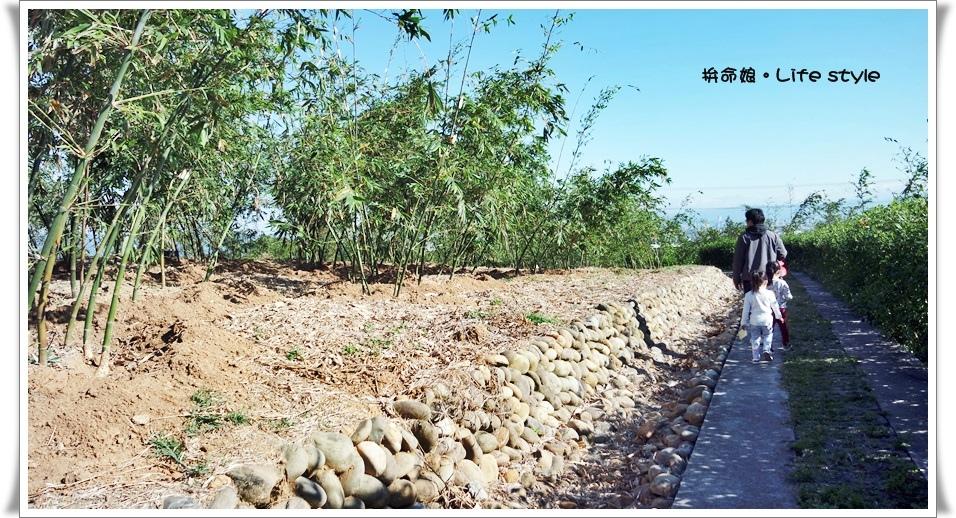 五股 旗竿湖農場21.jpg