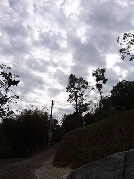17-01-21-14-24-44-185_photo.jpg