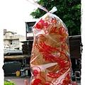 暑假回娘家遊安平古堡by小雪兒1020719IMG_1166.JPG