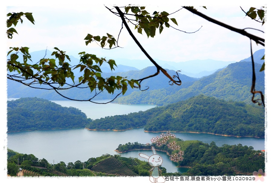 石碇千島湖.順益茗茶by小雪兒1020929IMG_8729.JPG