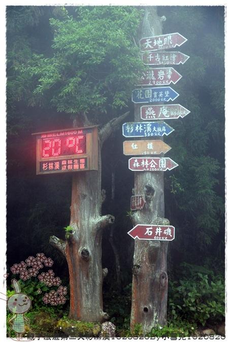 親子旅遊第二天杉林溪1020820By小雪兒1020820IMG_6246.JPG