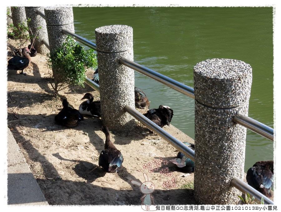 假日輕鬆GO志清湖.龜山中正公園1021013By小雪兒IMG_4039.JPG