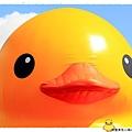 桃園黃色小鴨by小雪兒1021031IMG_0047.JPG