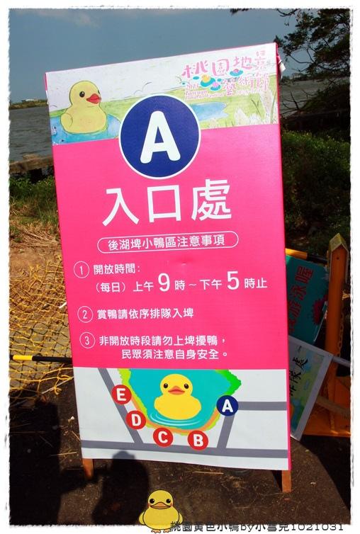 桃園黃色小鴨by小雪兒1021031IMG_0080.JPG