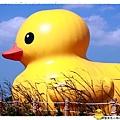 桃園黃色小鴨by小雪兒1021031IMG_0101.JPG