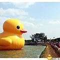 桃園黃色小鴨by小雪兒1021031IMG_0155.JPG