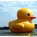 桃園黃色小鴨by小雪兒1021031IMG_4985.JPG