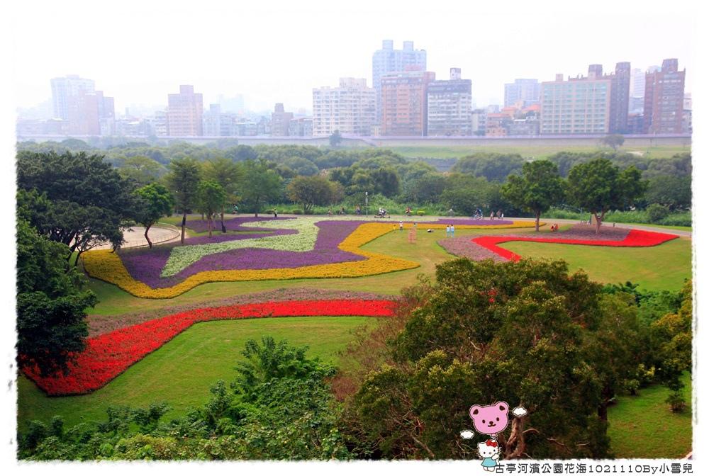 古亭河濱公園花海1021110By小雪兒IMG_0281.JPG