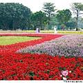 古亭河濱公園花海1021110By小雪兒IMG_0286.JPG