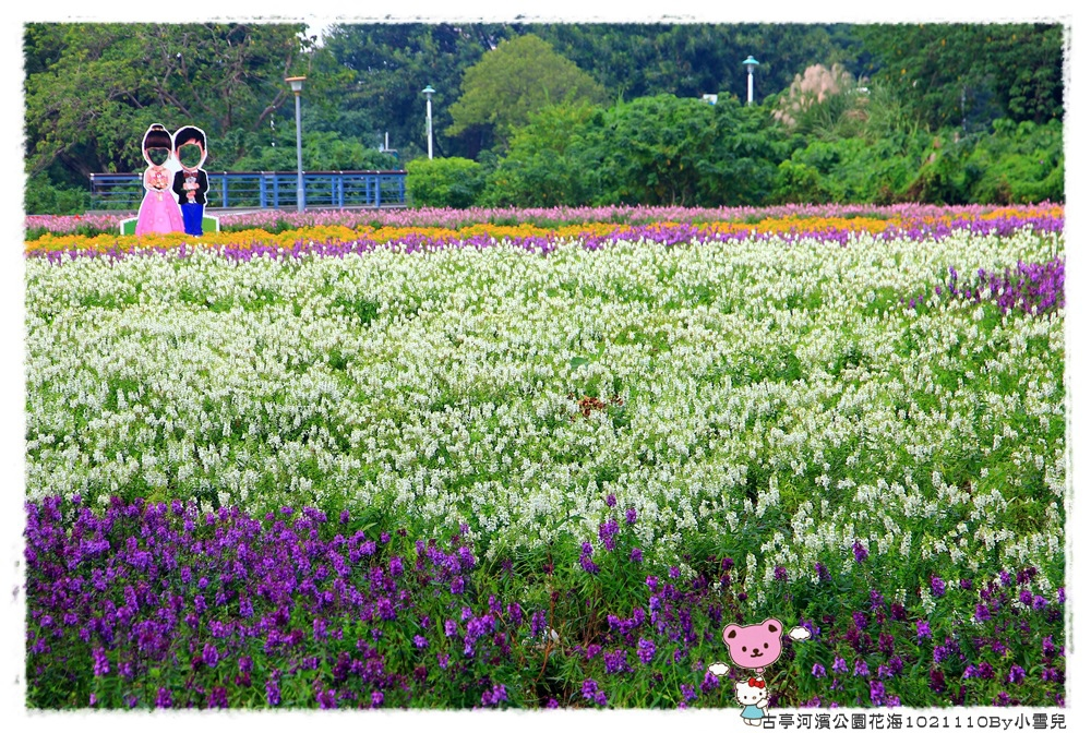 古亭河濱公園花海1021110By小雪兒IMG_0338.JPG