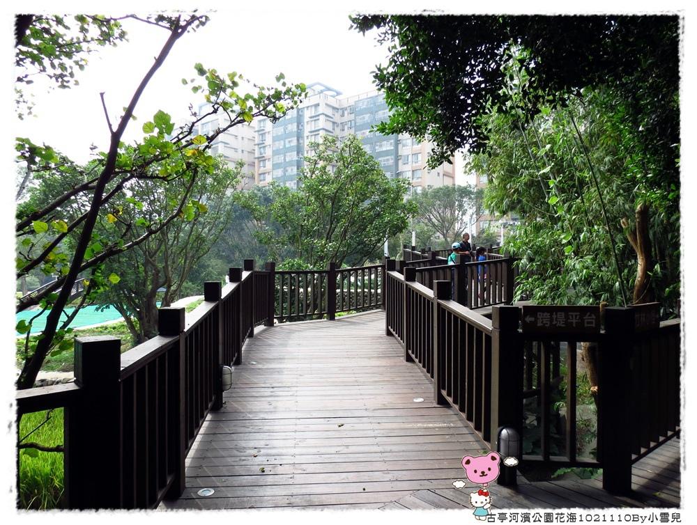 古亭河濱公園花海1021110By小雪兒IMG_5140.JPG
