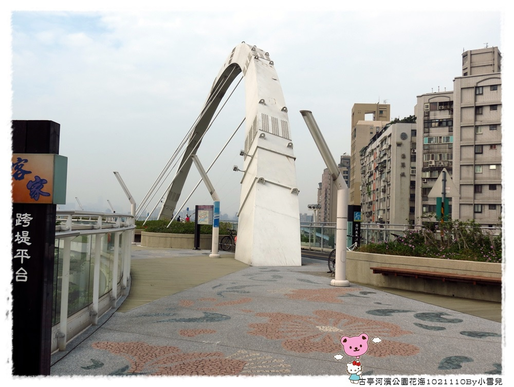 古亭河濱公園花海1021110By小雪兒IMG_5146.JPG