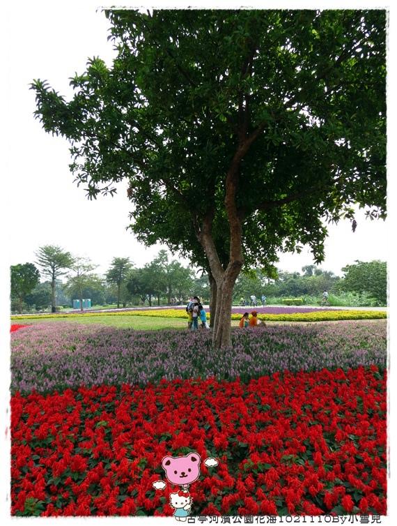 古亭河濱公園花海1021110By小雪兒IMG_5152.JPG