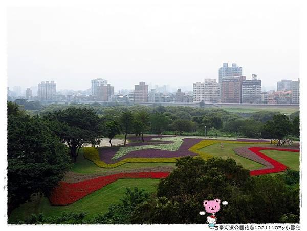 古亭河濱公園花海1021110By小雪兒IMG_5196.JPG